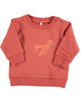 Newborn sweater Rood