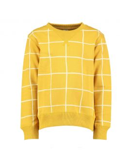 Jongens sweater Geel