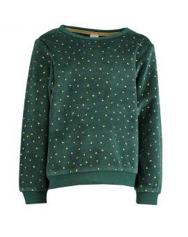 Meisjes sweater Groen