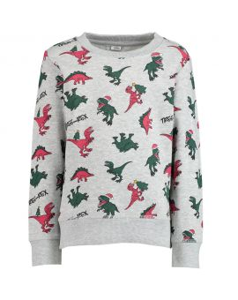 Jongens sweater Lichtgrijs