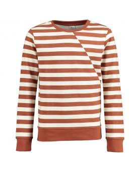 Jongens sweater Bruin