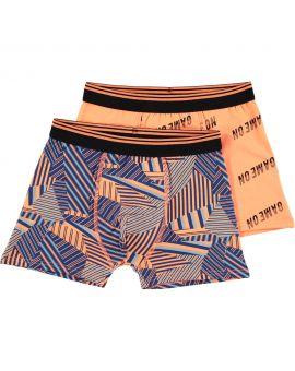 Tiener boxer Oranje