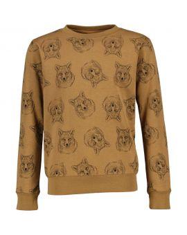 Jongens sweater Lichtbruin