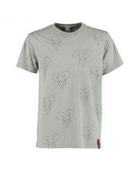 Jongens T-shirt Grijs