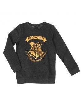 Harry Potter Meisjes sweater