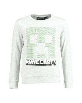 Minecraft Jongens sweater Grijs